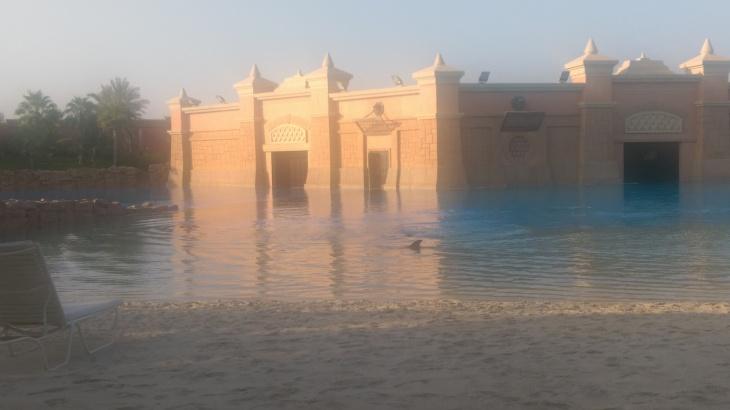 Dolphin Bay, Atlantis, The Palm, Dubai