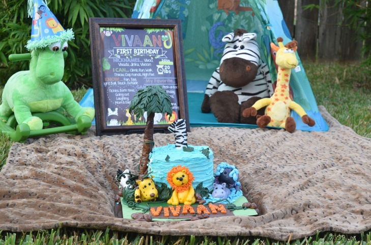 Jungle theme cake smash outdoor set up