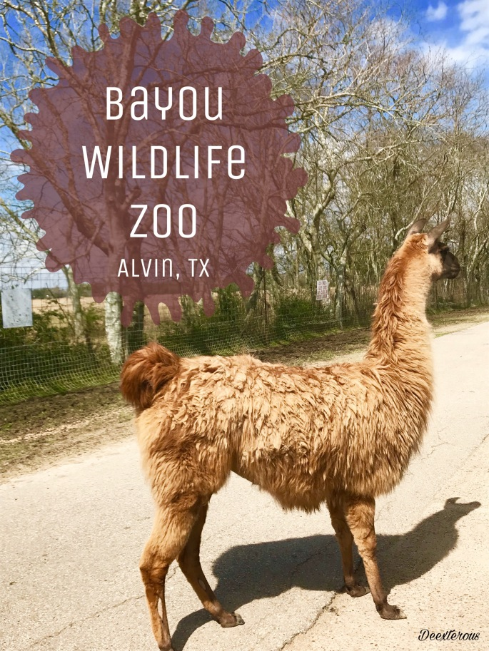 Bayou Wildlife Zoo - open range Zoo in Texas
